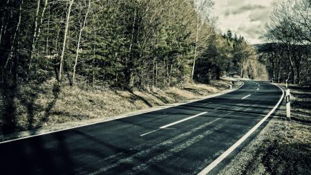 Заставки дорога, трасса, лес