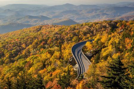 Картинки осень, лес, дорога, деревья