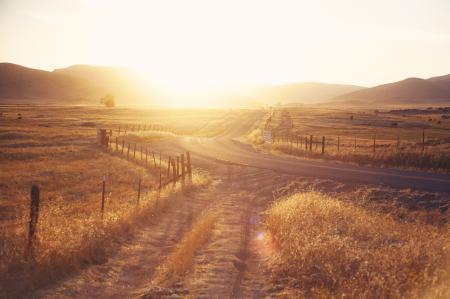 Фотографии природа, пейзаж, растительность, дорога