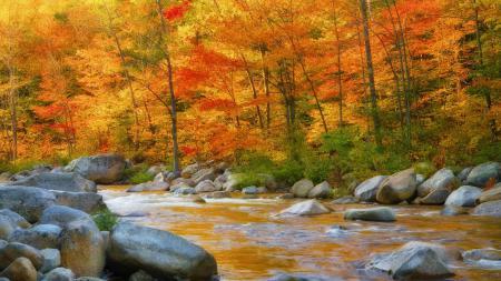 Картинки горы, склон, деревья, осень
