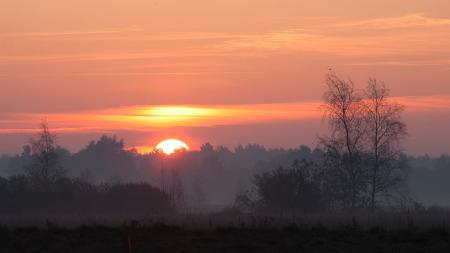 Фото природа, солнце, пейзаж, закат