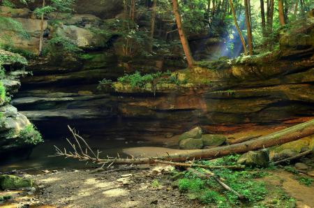 Фотографии лес, камни, лучи, полумрак