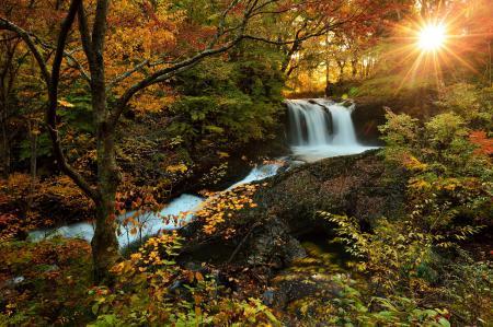 Заставки водопад, лес, осень, солнце
