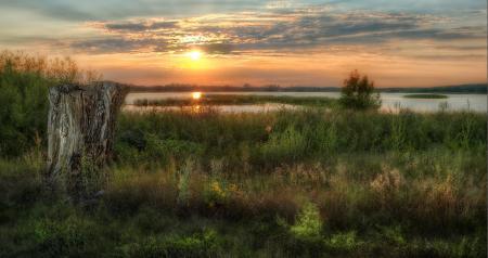 Картинки вечер, трава, пень, озеро