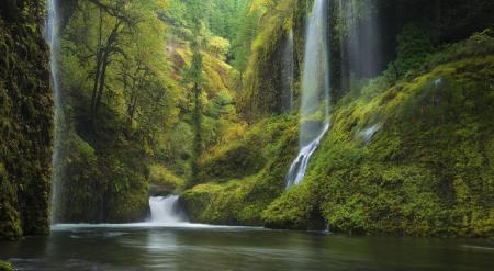 Фото природа, водопад, река, лес