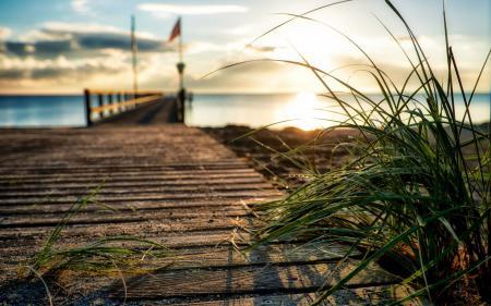 Фото трава, мост, море, закат