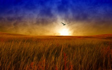 Заставки небо, облака, закат, зарево