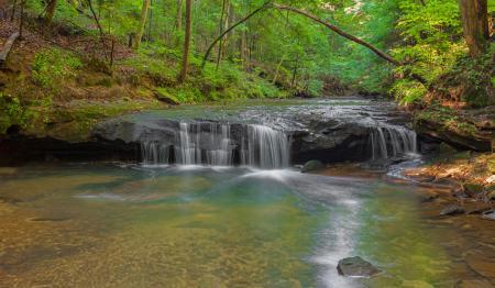 Фотографии лес, осень, деревья, река