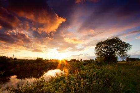 Заставки природа, река, дерево, кусты