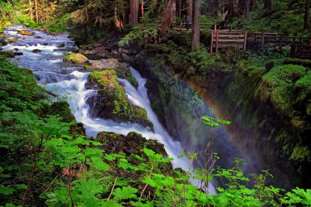 Заставки Sol Duc Falls, Olympic National Park, Washington, водопад