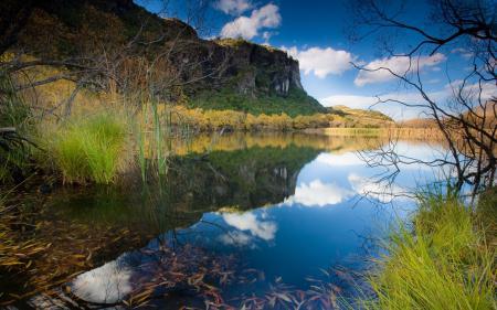 Обои озеро, Новая Зеландия, отражение, лето