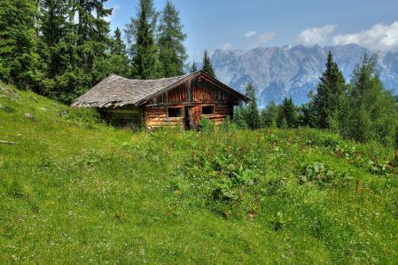 Картинки дом, деревянный, заброшенный, трава