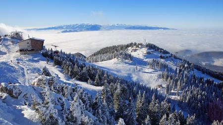 Обои горы, снег, лес, подьемник