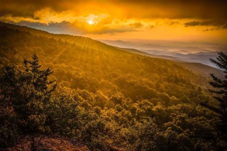 Картинки горы, лес, утро, солнце