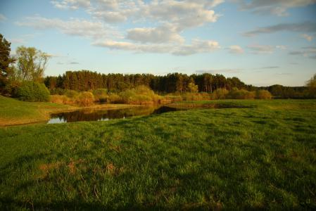 Обои река, пейзаж, природа, луг