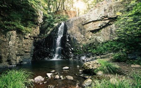 Фото водопад, лес, водоем, трава