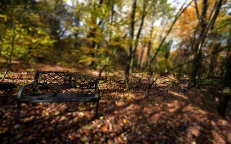 Обои парк, скамья, осень