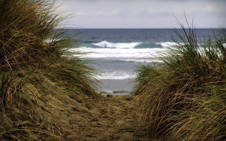 Обои море, дюны, природа