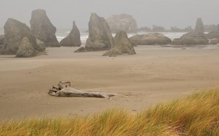 Фотографии море, трава, сухая, камни