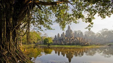 Фото болото, камбоджа, цивилизация