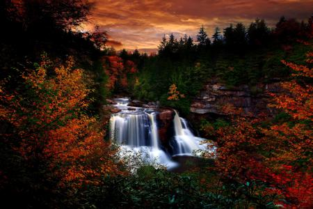 Заставки Лес, деревья, листва, водопад