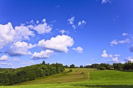 Картинки Панорама, Поле, Луг, Трава