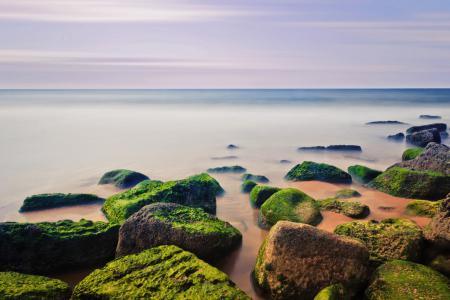 Фото небо, море, камни, мох