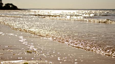 Фотографии море, побережье, песок, волны