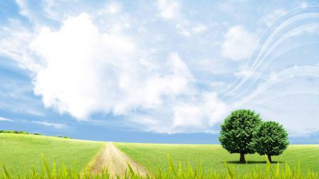 Фото природа, пейзаж, поле, лето