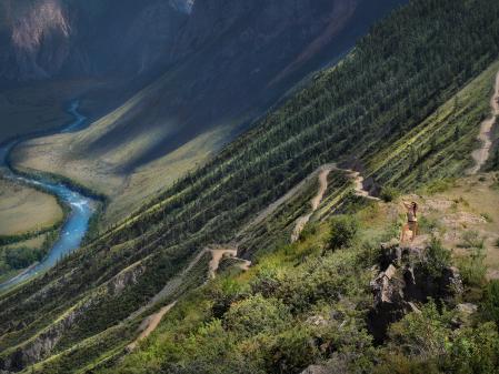 Заставки Горный Алтай, перевал Кату-Ярык, девушка в шортах, ели