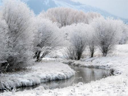 Фотографии зима в лесу, деревья под снегом, горная река