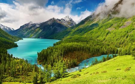 Фото высокие горы, природа, пейзаж, сосны