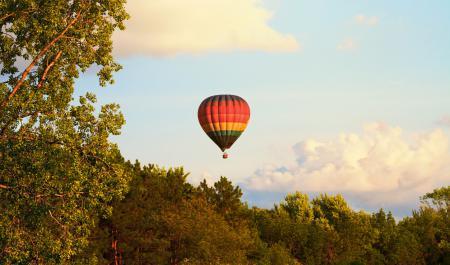 Обои воздушный шар, деревья, небо