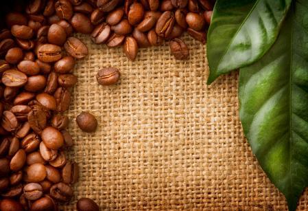 Обои кофе, зёрна, листья