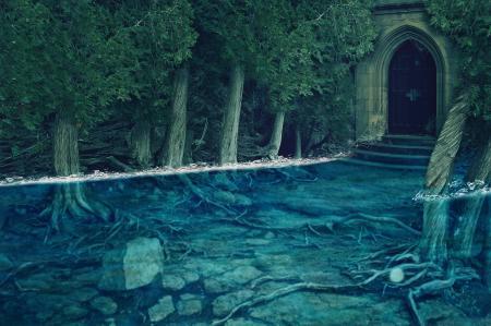 Заставки вода, камни, затопление, деревья