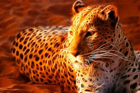 Картинки леопард, огненный, пятна, лежит