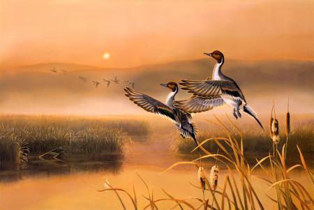 Картинки Darrell Davis, Golden Memories, живопись, раннее утро