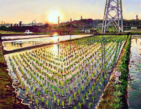 Заставки арт, hikarinotubu, поле, вода