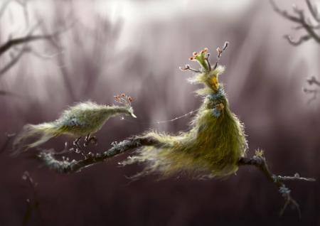 Рисунки арт, лес, девушка, птица