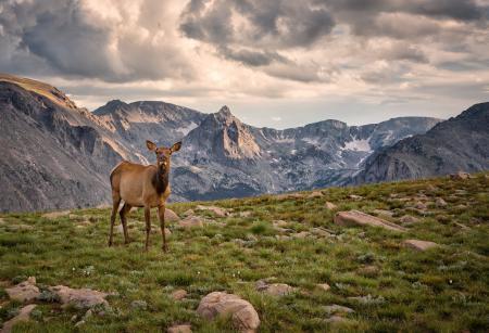 Фотографии Rocky Mountain National Park, Colorado, горы, вершины