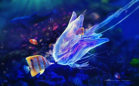 Фото морские обитатели подводный мир