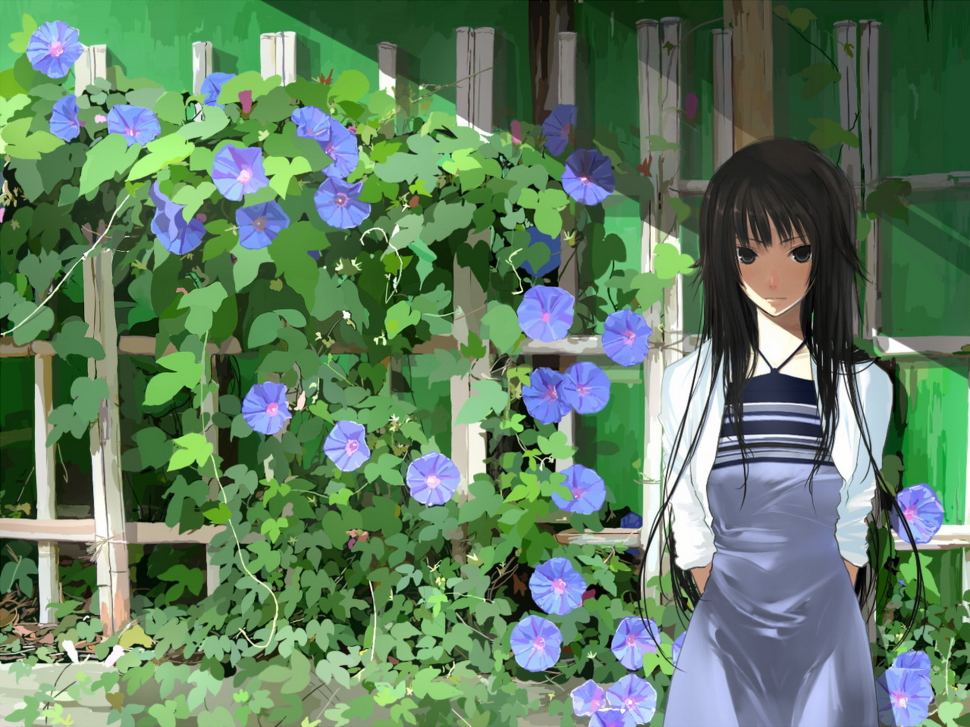 Обои bakemonogatari скачать на рабочий стол, заставки цветы