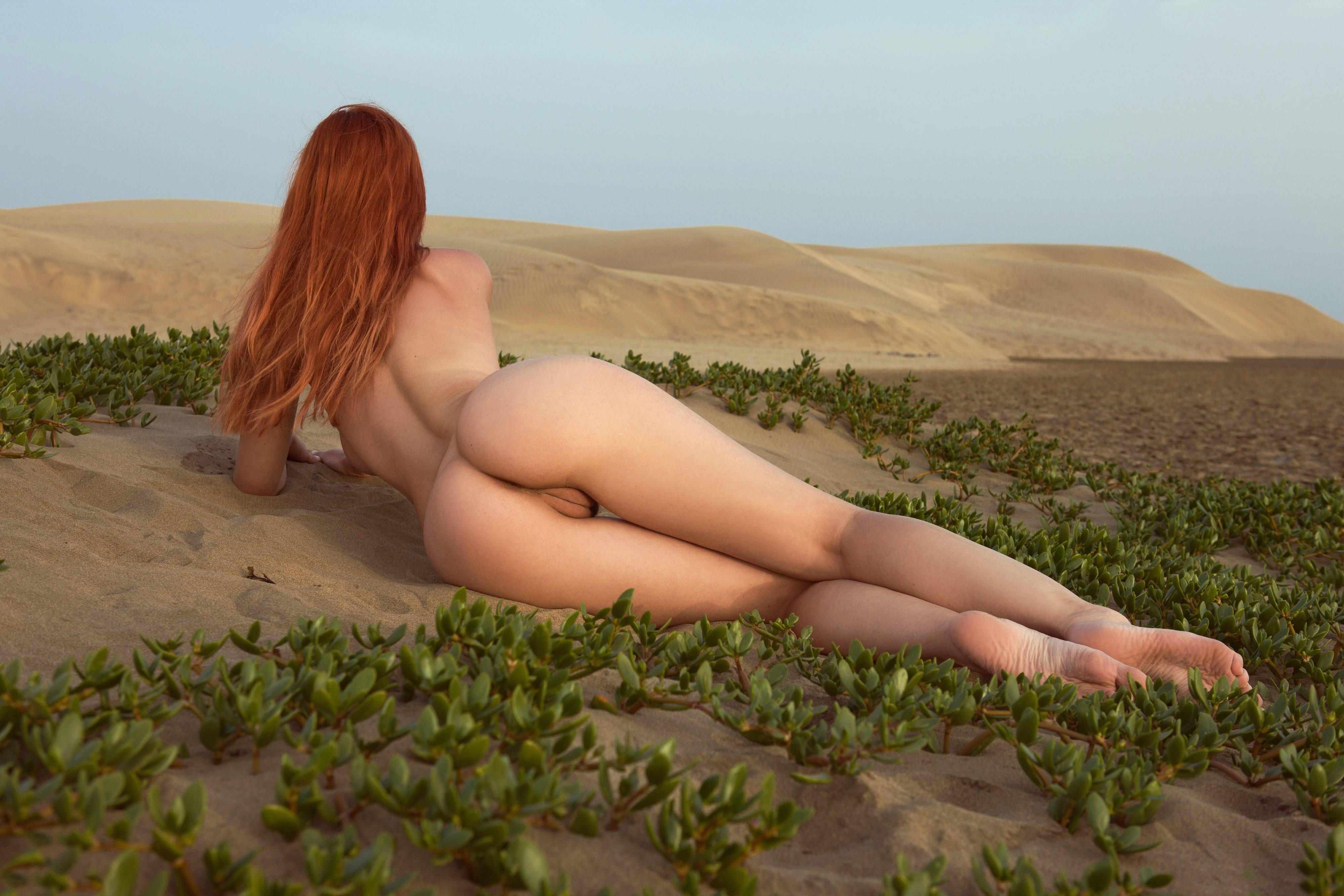 Смотреть голые попки онлайн бесплатно в хорошем качестве 24 фотография