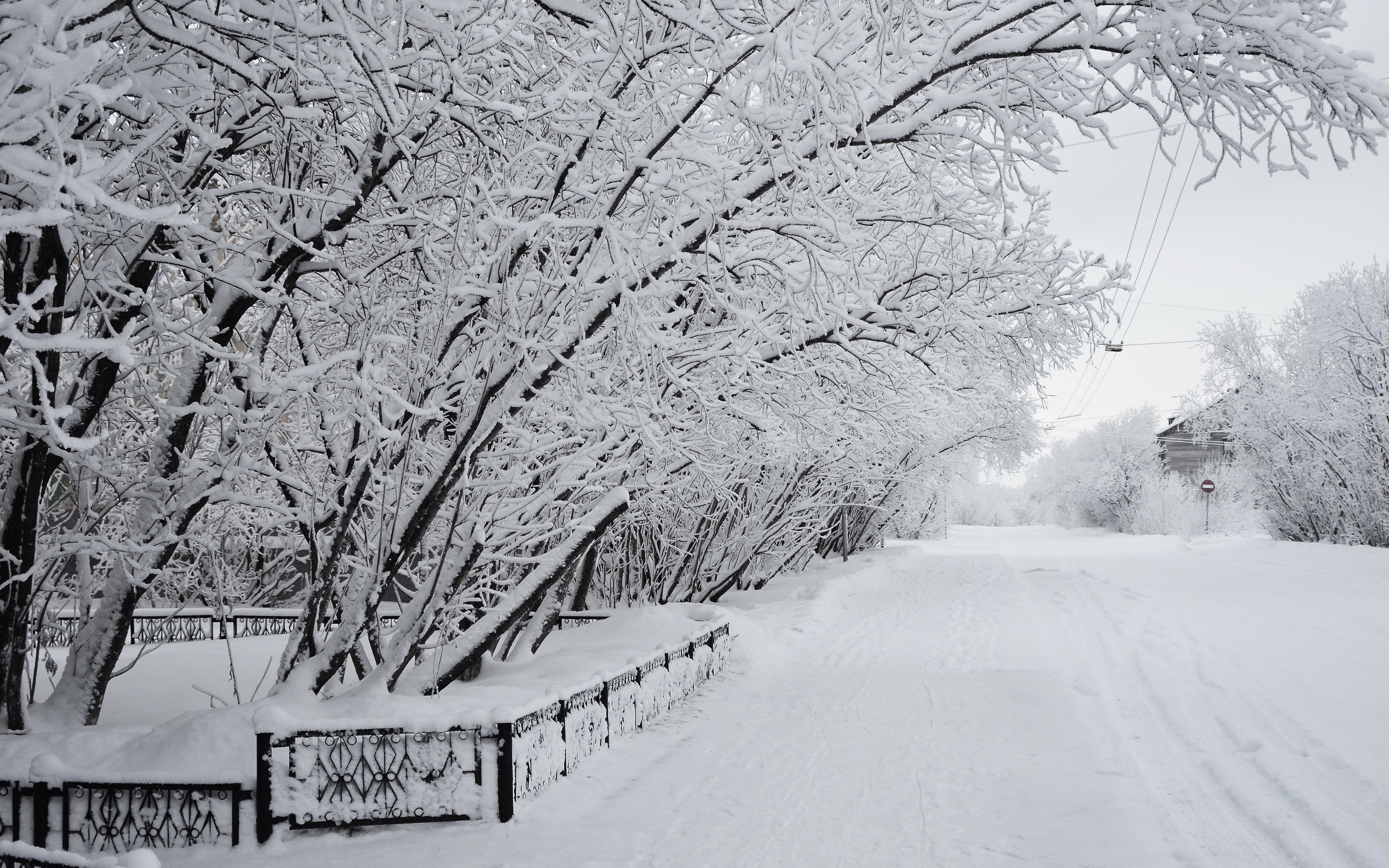 Зима Фото Скачать Бесплатно Зимние Фото Красивые