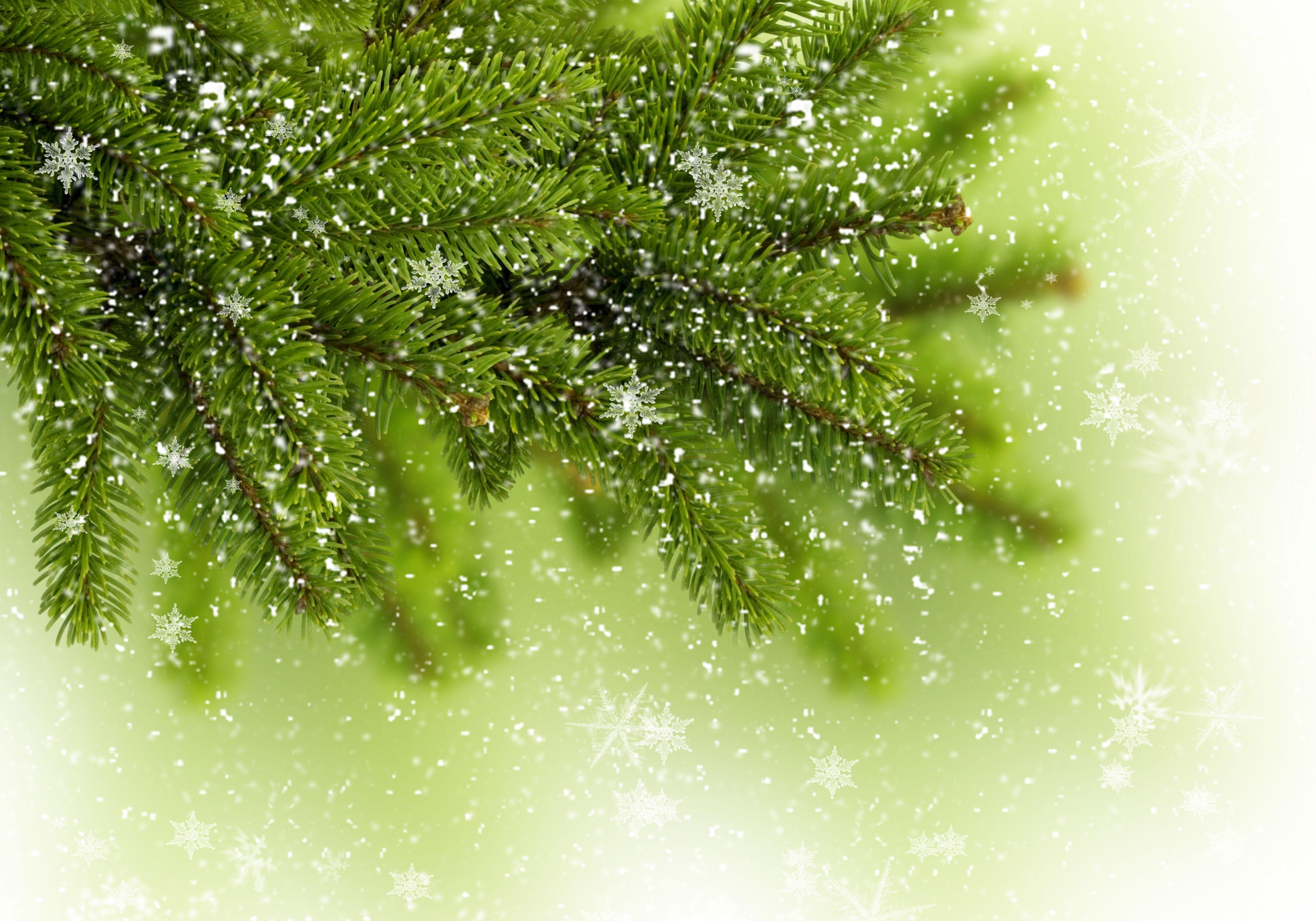 картинка снежные комки