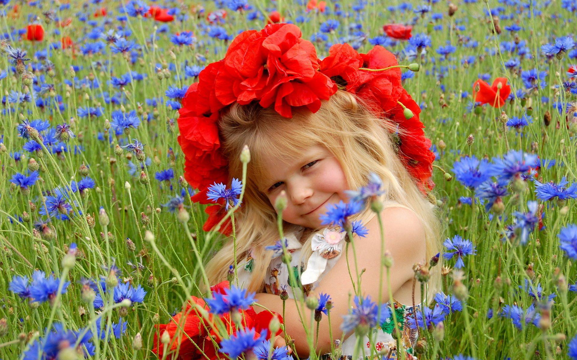 Из цветов васильки красные маки