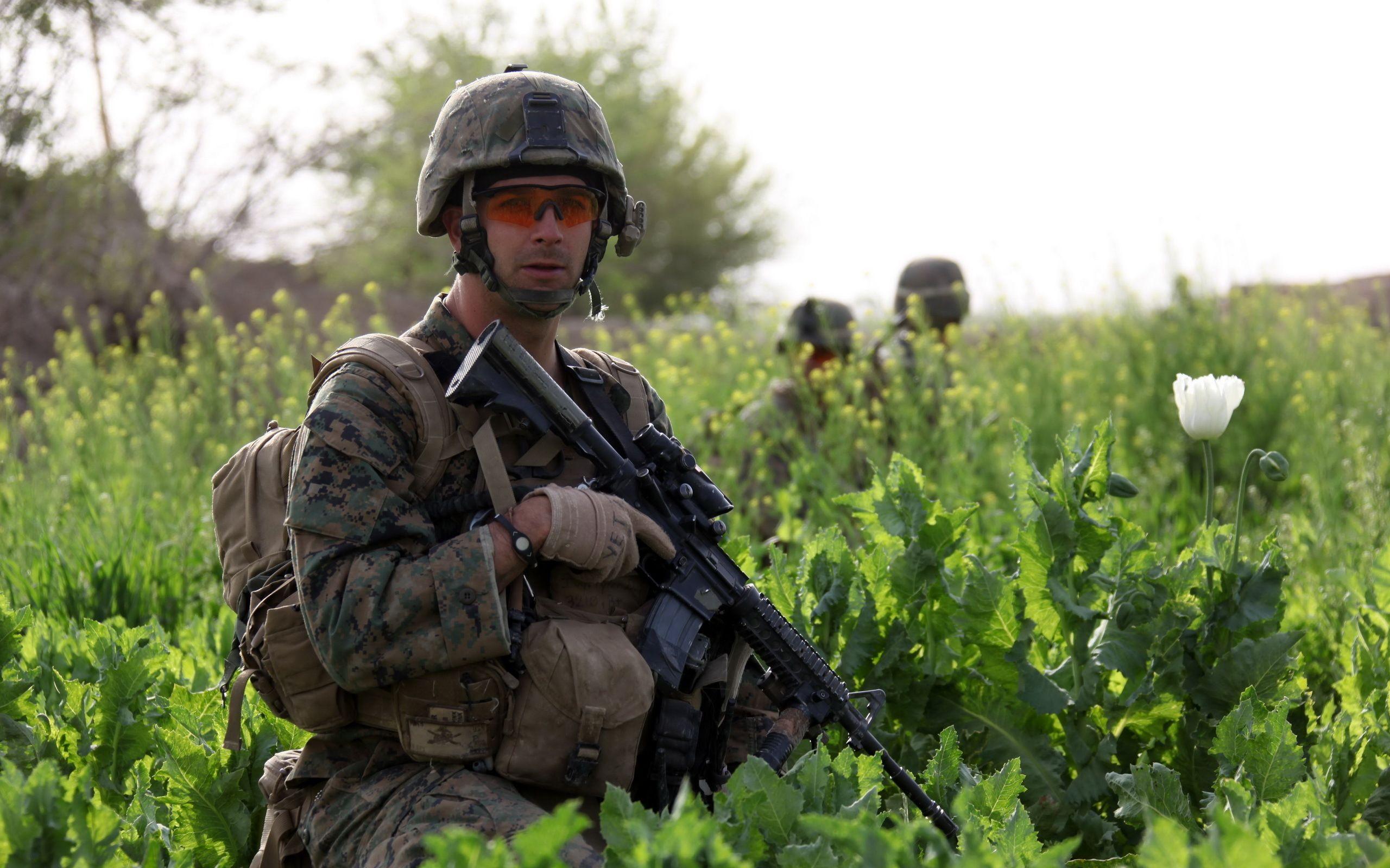 Фото маковое поле солдат вооруженный