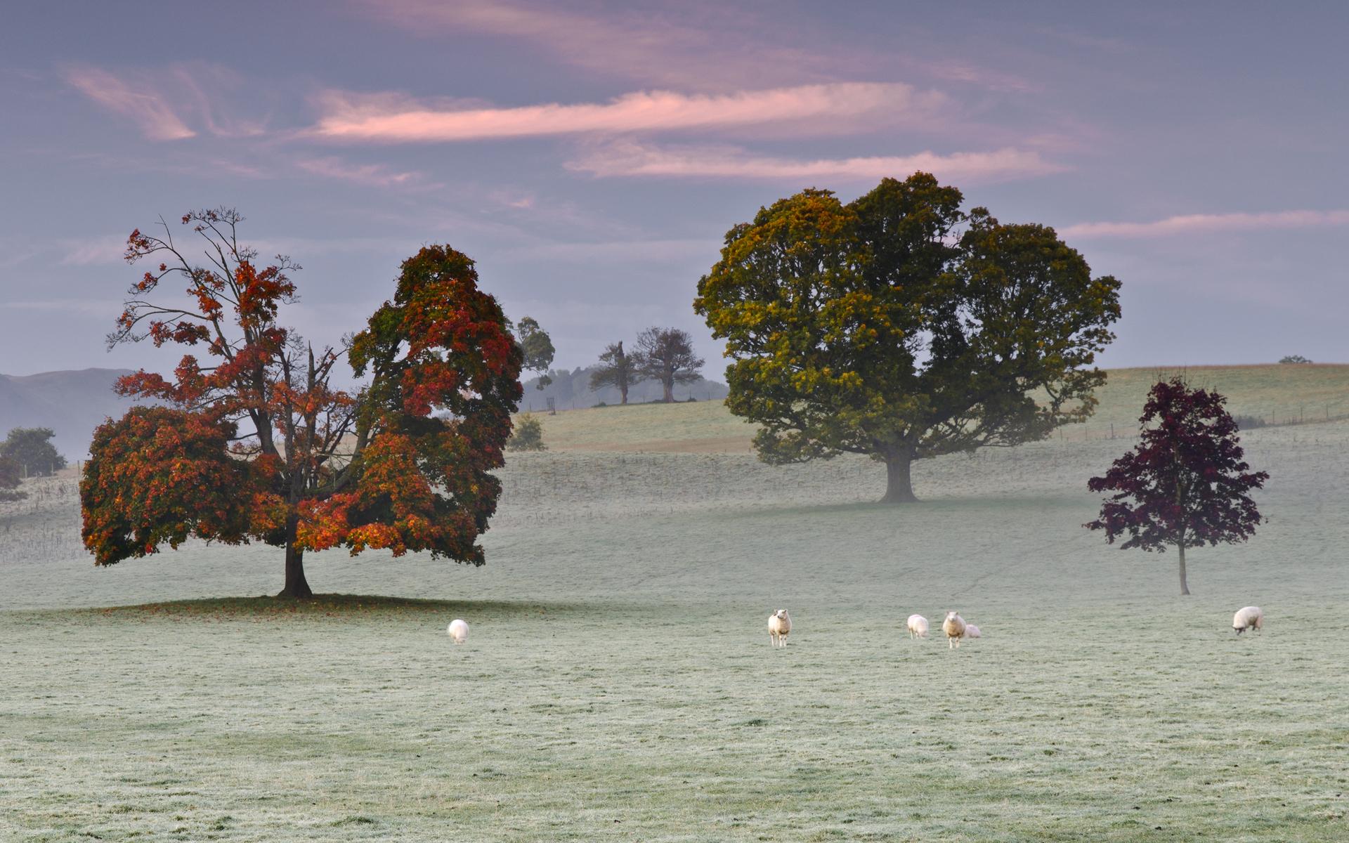 Картинки горы туман зима на рабочий стол  Красивые