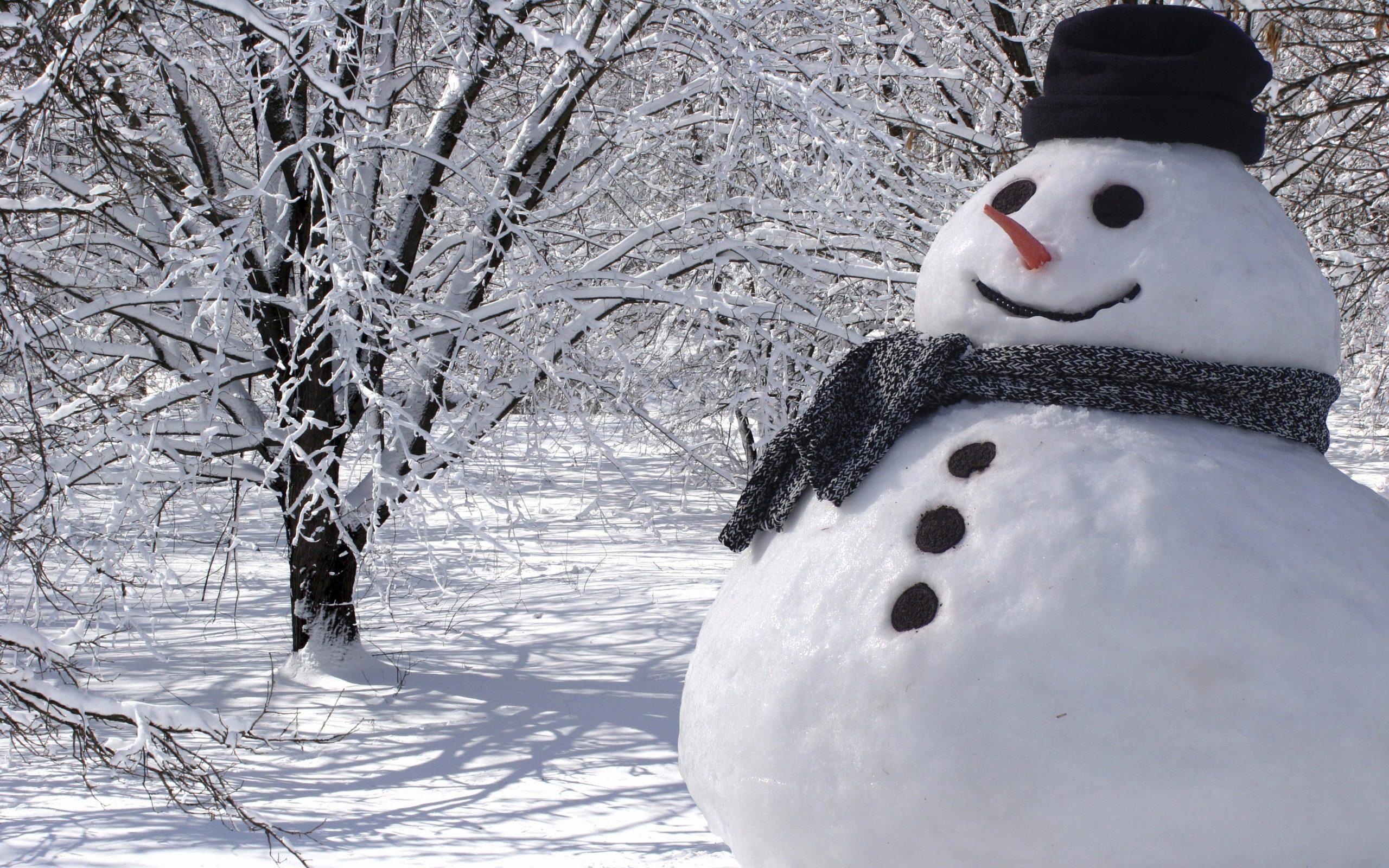 Обои смешной снеговик скачать на рабочий стол, картинки из снега