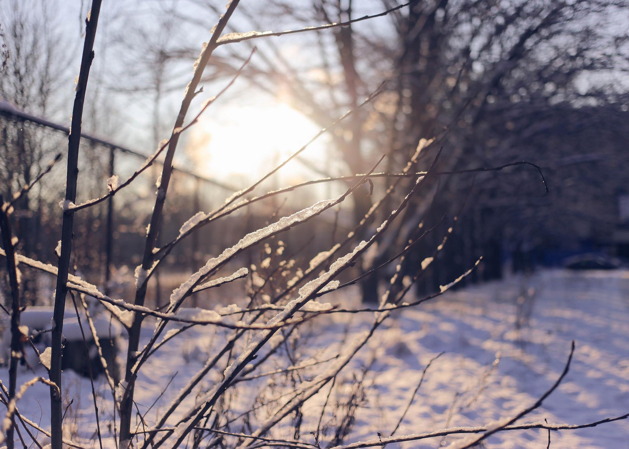 Фото зимы скачать бесплатно  Фото мир природы